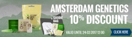 Amsterdam Genetics Offer